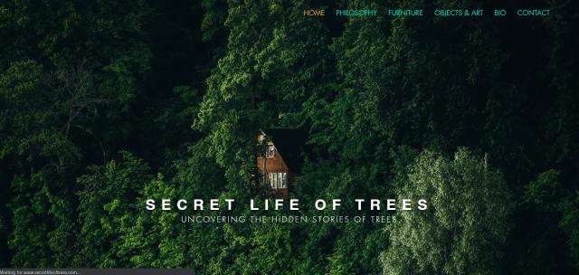 Screenshot of front of website for Designer Liew Yu Ha
