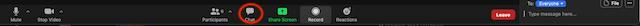 Screenshot of Zoom control bar